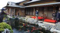 Nhà Vườn Takasago – Nhật Bản